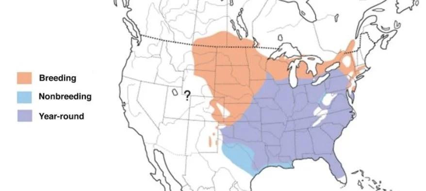 red-headed-woodpecker-range-map