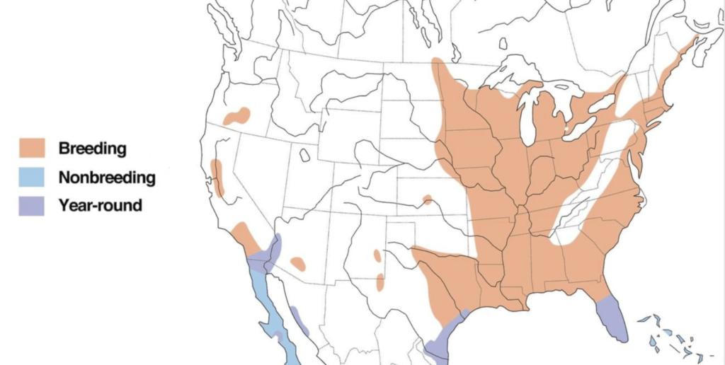 least bittern range map
