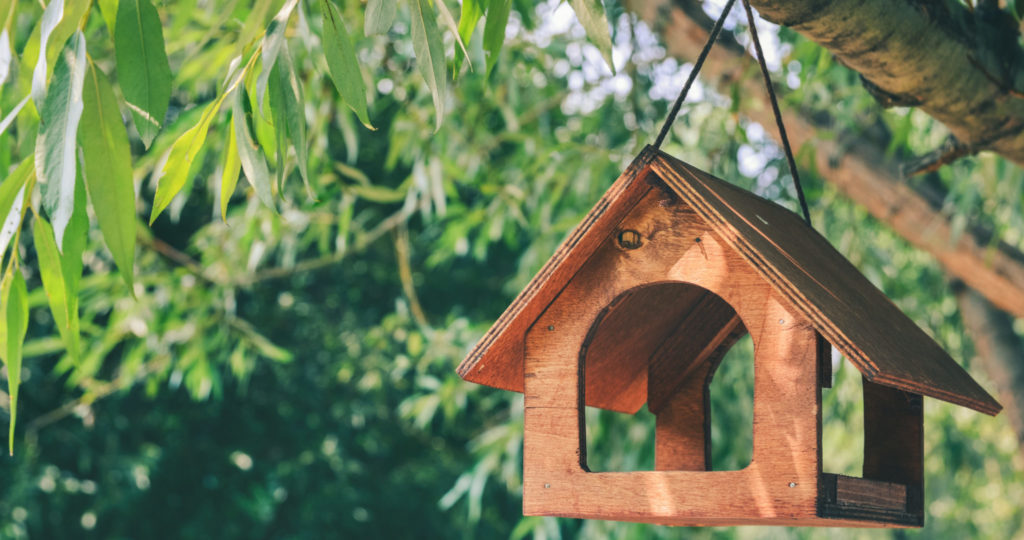 feeder under trees to keep hawks away