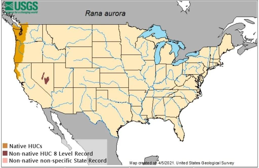 northern red legged frog range map