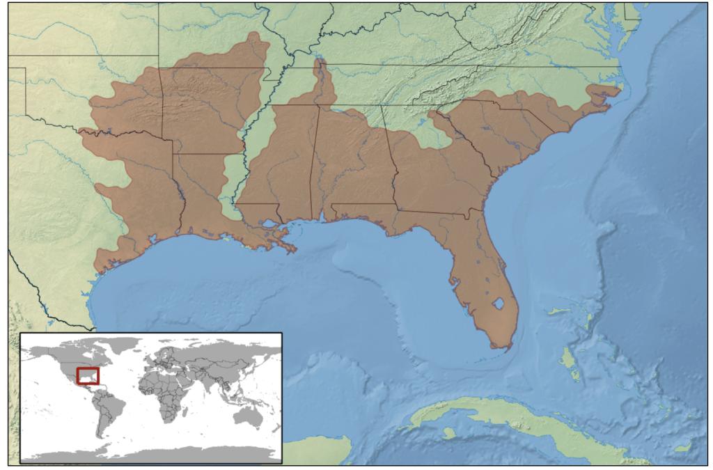 pygmy rattlesnake range map