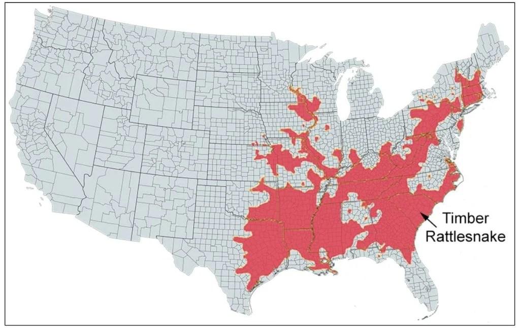 timber rattlesnake range map