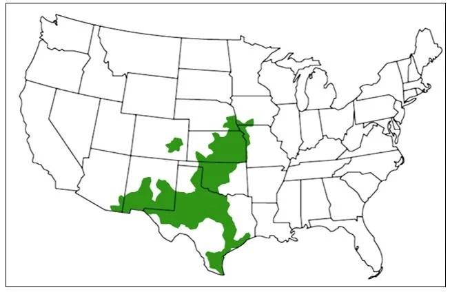 western massasauga range map