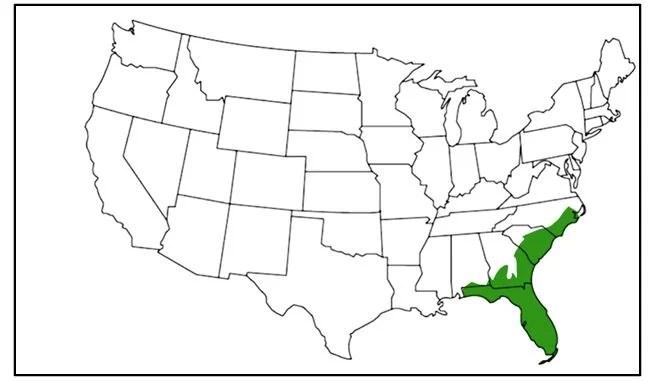 black swampsnake range map