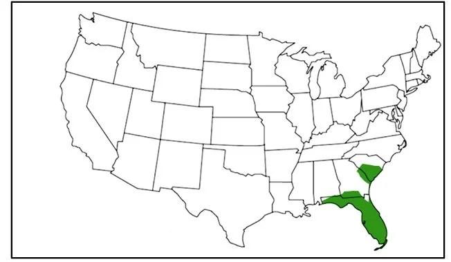 florida green watersnake range map