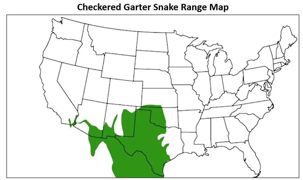 checkered garter snake range map