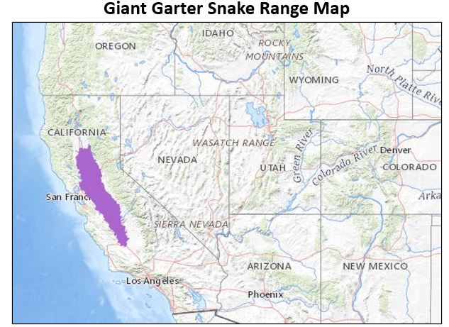 giant garter snake range map
