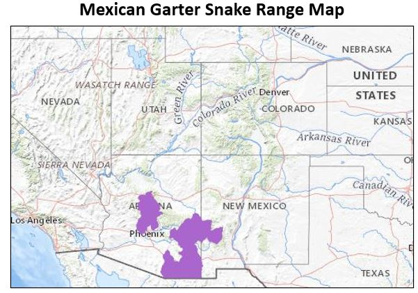mexican garter snake range map
