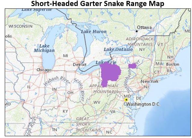 short headed garter snake range map
