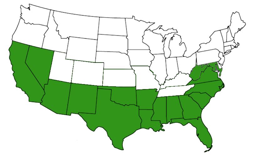 spinybacked orb weaver range map