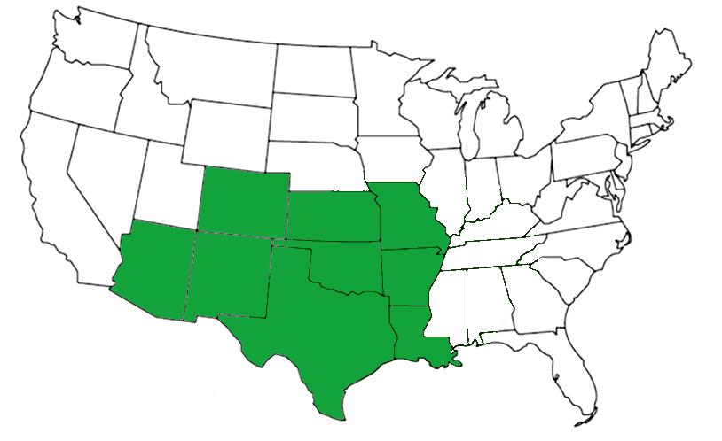 Texas brown tarantula range map