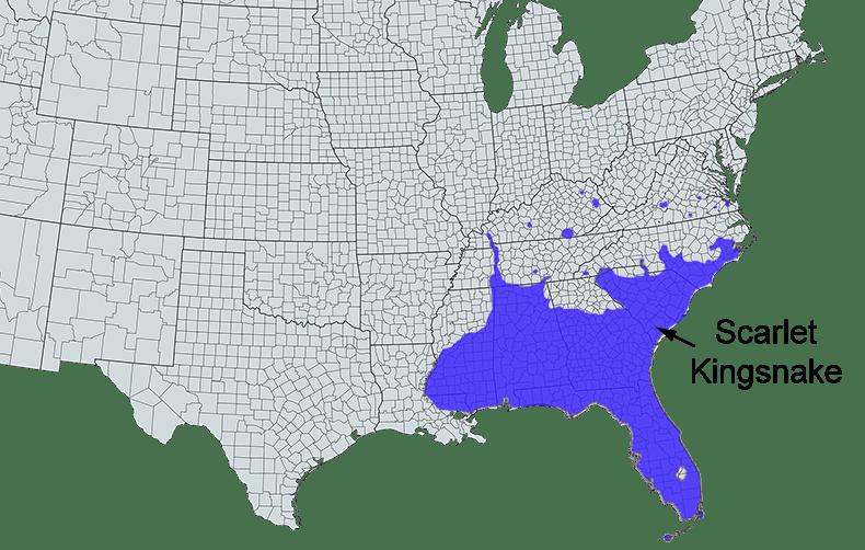 scarlet kingsnake range map