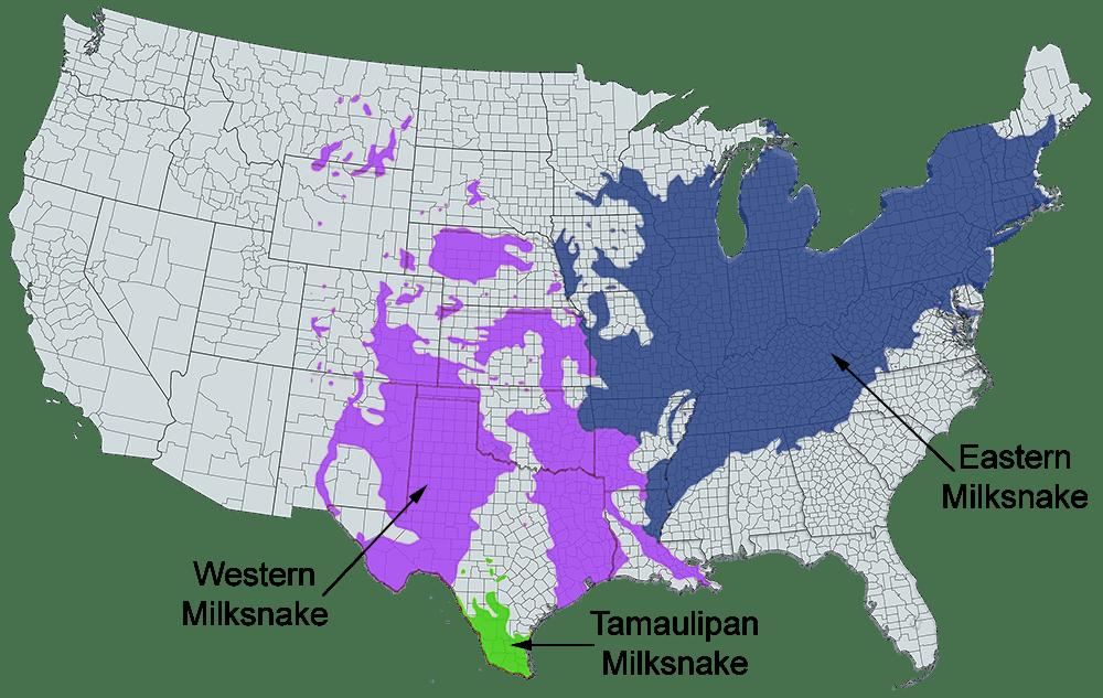 western milksnake range map