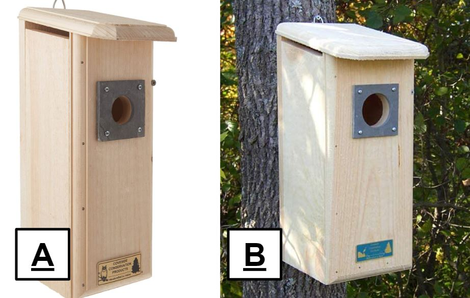 attracting woodpeckers with nest boxes