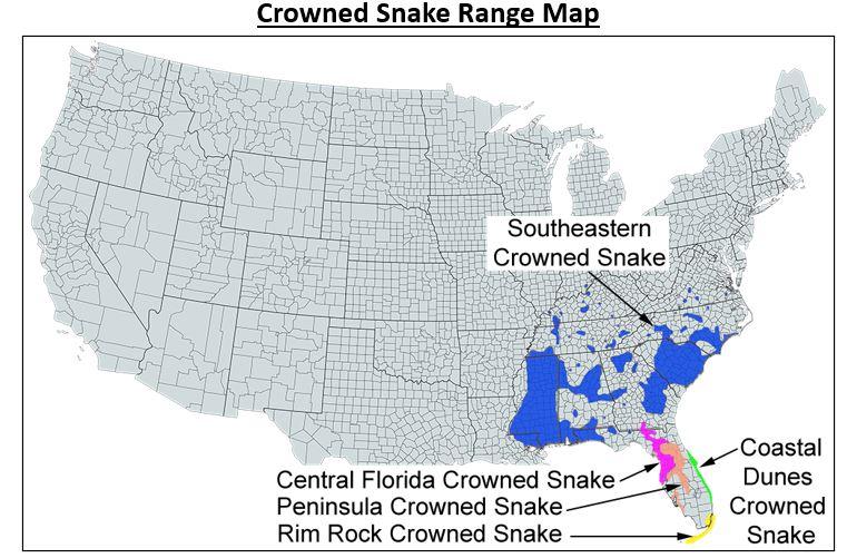 crowned snake range map