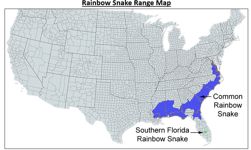 rainbow snake range map