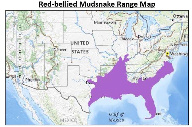 red bellied mudsnake range map