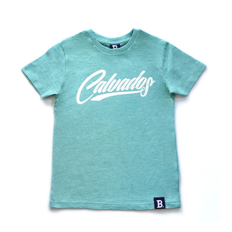 172e4e0ea616d tee shirt enfant vert - www.aulapinbleu.net