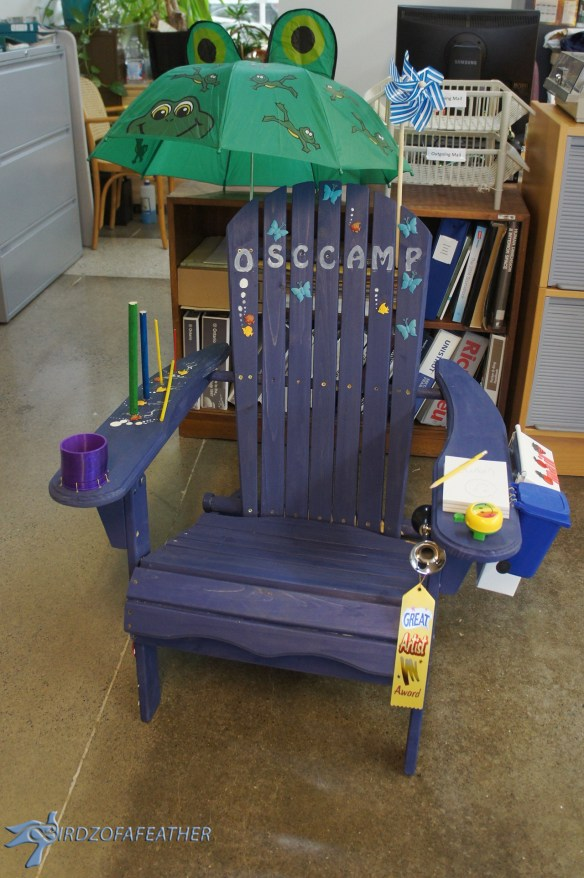 Muskoka Chair Challenge Designs | Birdz of a Feather #muskoka chair # Ontario Science Centre