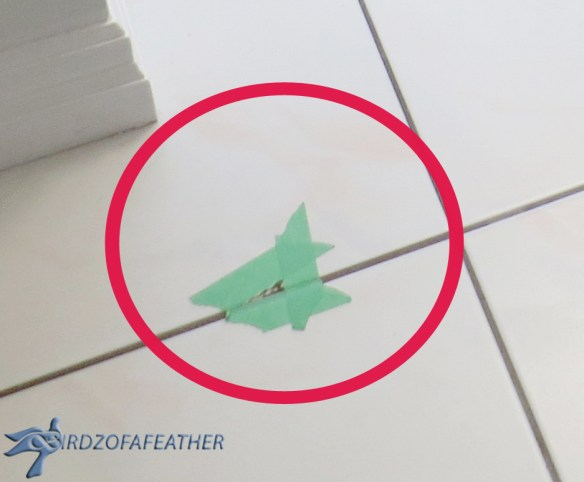 Why rip out your ceramic floor when you can repair your chipped floor tile instead? We've got the tutorial on just how to do it. Try this easy fix! Birdz of a Feather | repair chipped floor tile | how to repair chipped floor tile | repairing chipped floor tiles | fix chipped floor tiles | repair chipped tile glaze