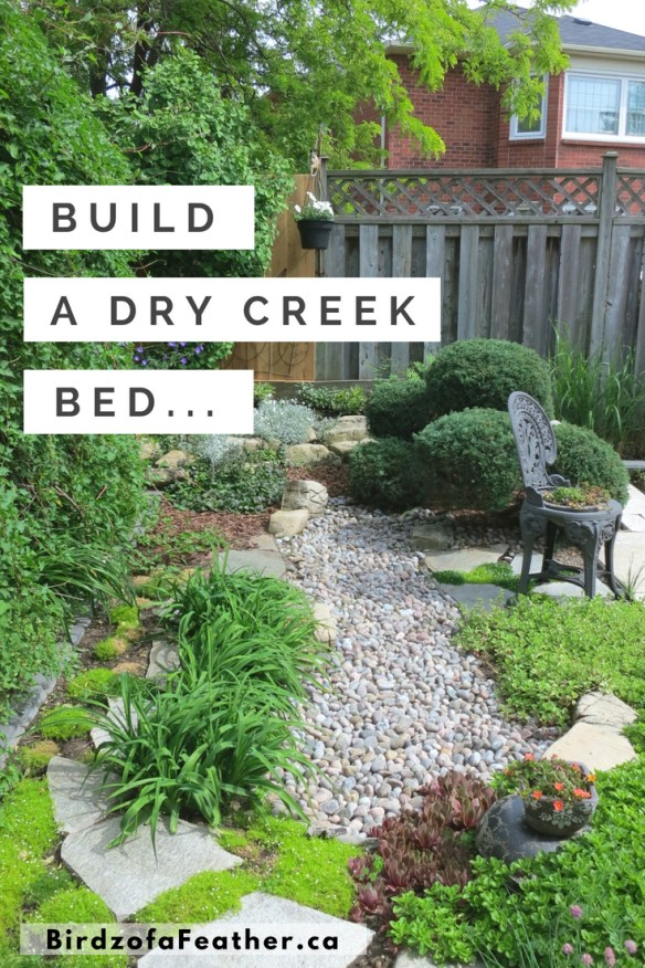 Landscaping a dry creek bed is phase one of our low maintenance garden project. Create a sustainable garden! Birdz of a Feather | dry creek bed landscape | dry creek bed for drainage | dry creek bed landscape backyards | dry creek bed diy | dry creek bed river rock landscaping | plants for dry creek bed | dry creek plants | dry creek bed backyard | how to make a dry creek bed | dry creek bed ideas | dry creek bed garden | landscape ideas | landscape design | backyard oasis | backyard ideas