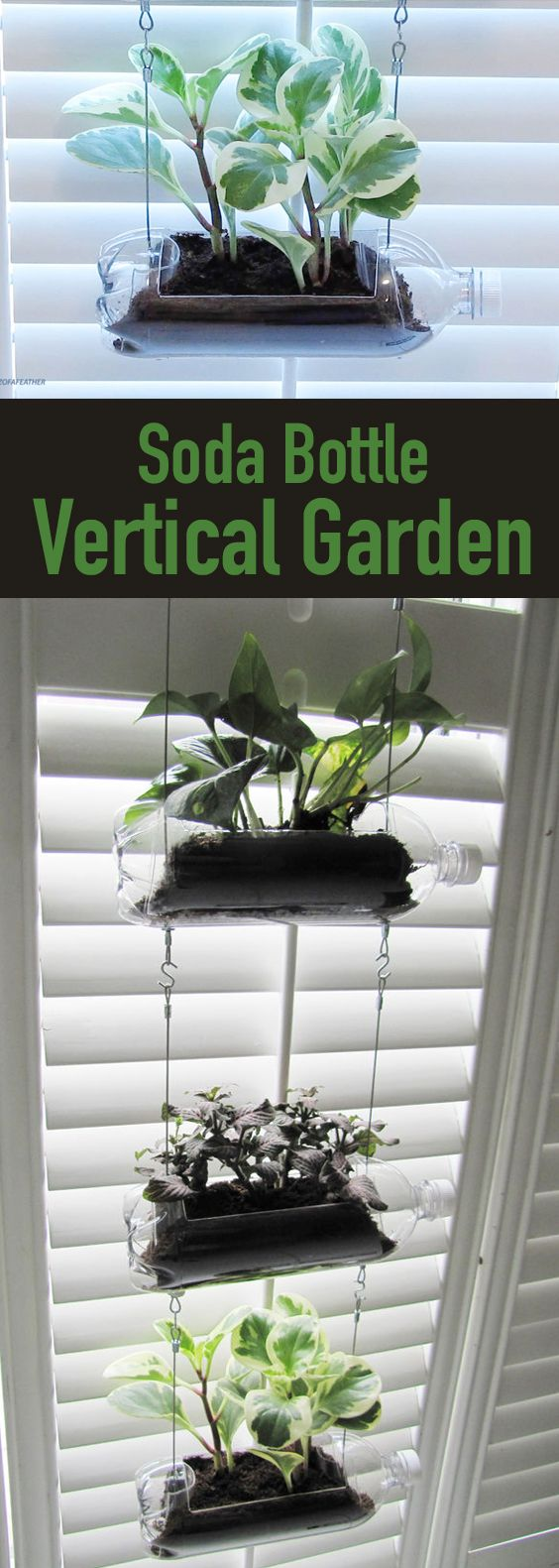 Learn how to create a vertical garden by turning plastic bottles into a hanging planter. Plastic bottle crafts | plastic bottle crafts DIY | plastic bottle planter | plastic bottle planters hanging | plastic bottle planters DIY | planters DIY | planter ideas | #plasticbottles #plasticbottlecrafts #planters #planterideas