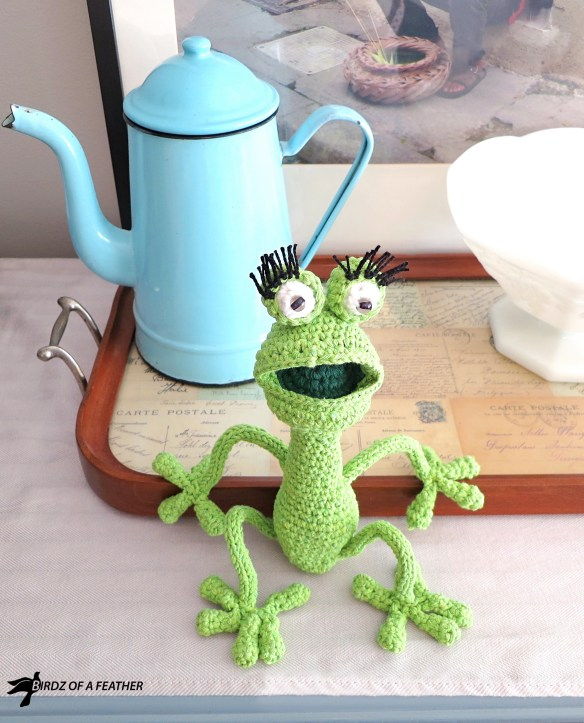 Gabriola Frog is a drama queen and she doesn't close her mouth for a minute. To her credit, she catches more flies that way! Drop in for the free pattern! Birdz of a Feather | Free pattern | Amigurumi | amigurumi free pattern | free crochet pattern | Frog | #birdzofafeather.ca #amigurumi #gabriolafrog #freepattern #amigurumipattern #craft #freecrochetpatterns #crochetfrog #diy #crochet #amigurumifrog #freeamigurumi #socutecrochet