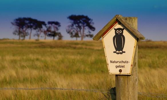 nature-reserve-957455_1920