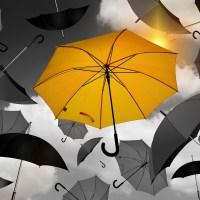 Wilhelm Genazino: Bei Regen im Saal