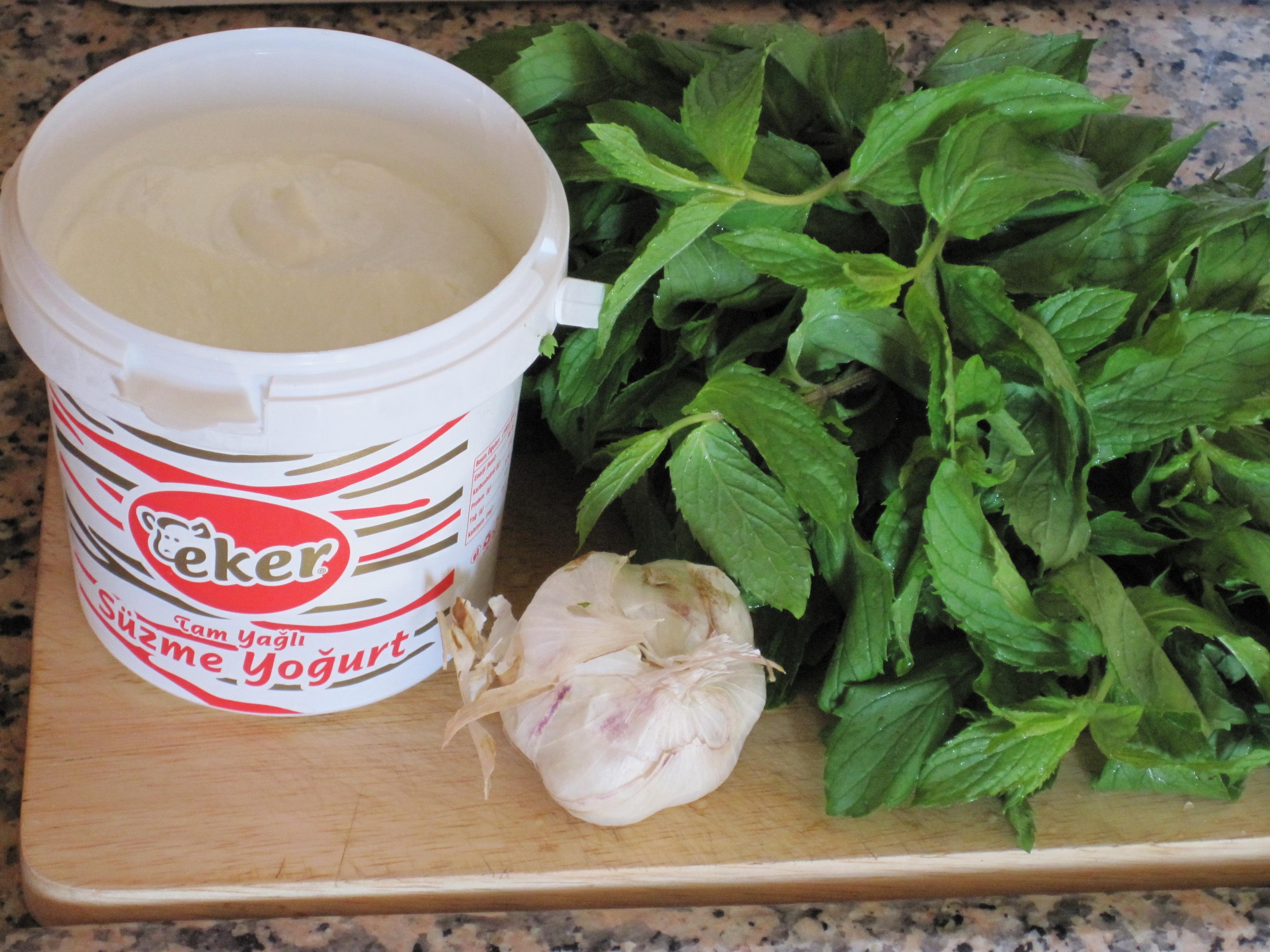 Turkisk Yoghurt, Mynta och Vitlök