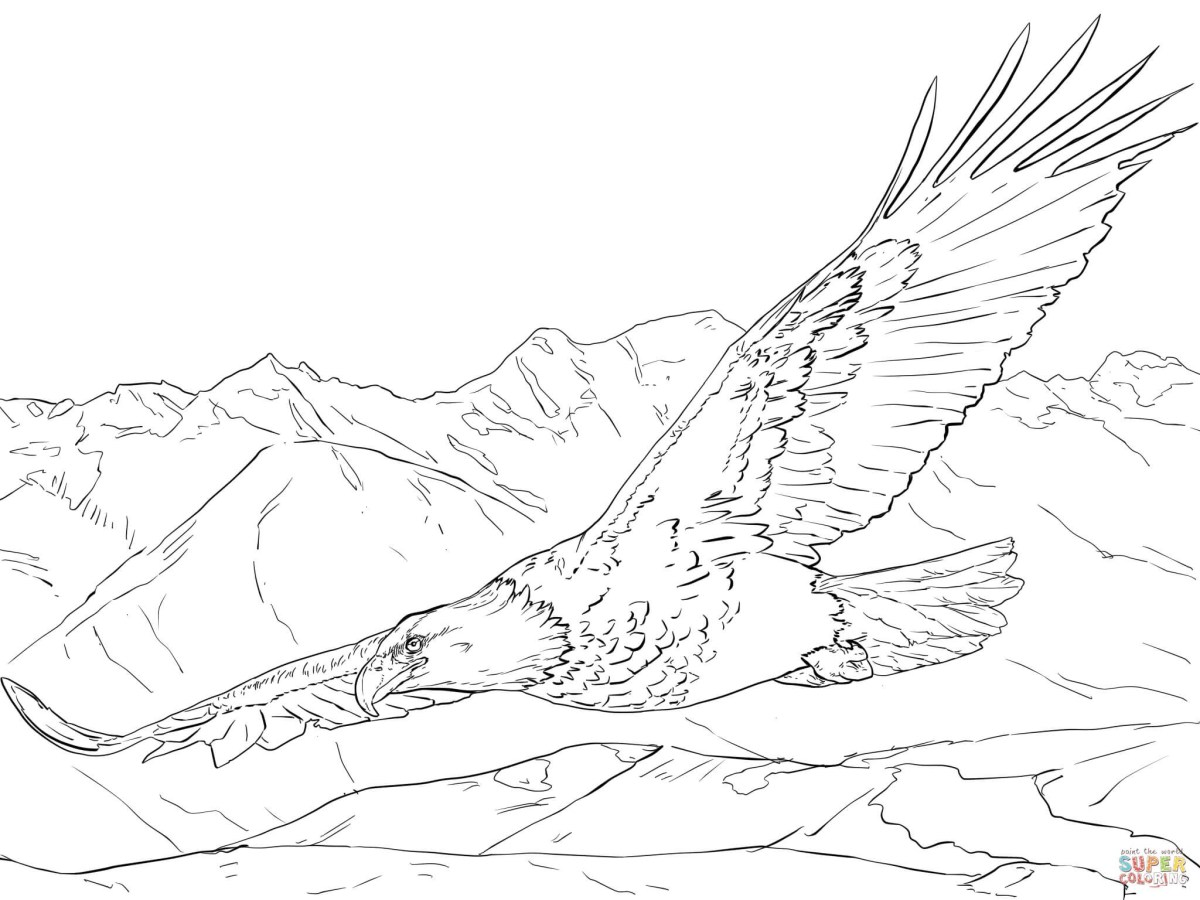 Bald Eagle Coloring Page Eagle Coloring Pages New Letter E ... | 900x1200