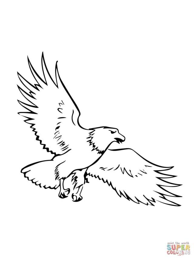 Bald Eagle Coloring Page Flying Bald Eagle Coloring Page In Eagle Coloring Page Coloring