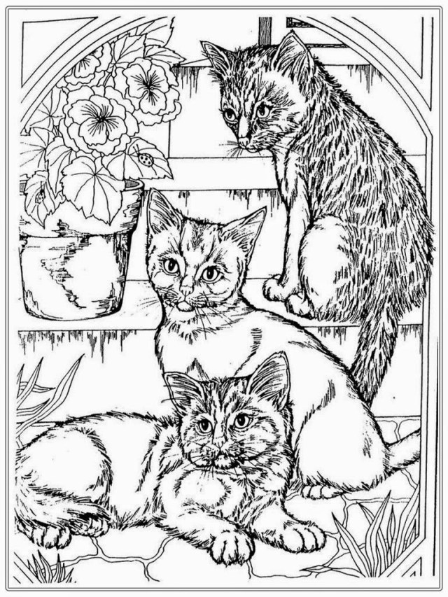 Dog And Cat Coloring Pages Coloring Pages Dogs And Cats Best Dog Cat Gambarmewarnai To Print Of