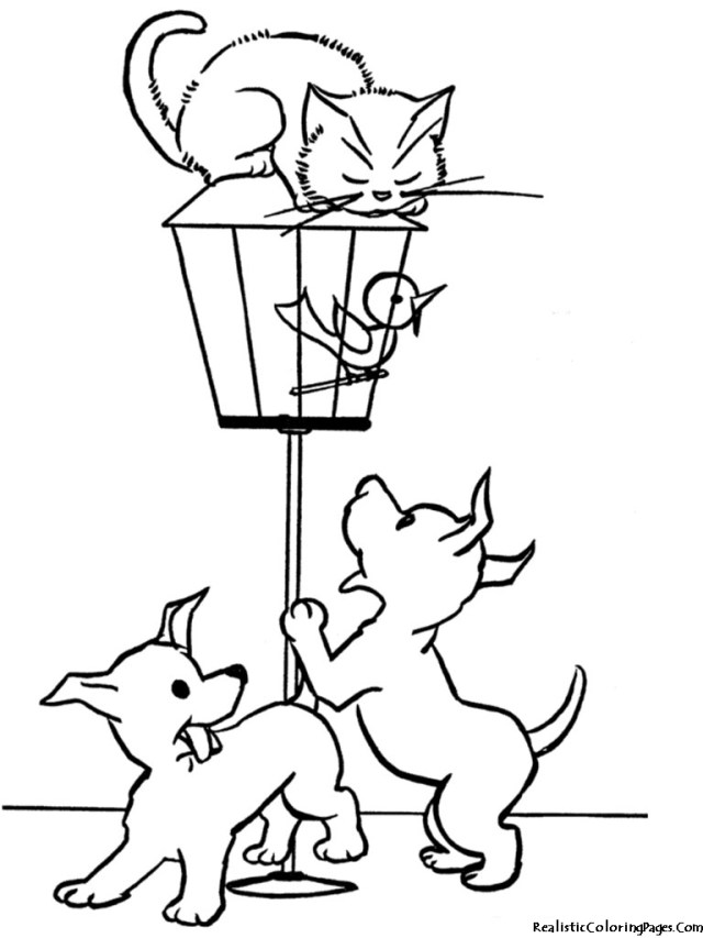 Dog And Cat Coloring Pages Coloring Pages Realistic Kitten Coloring Pages Picture