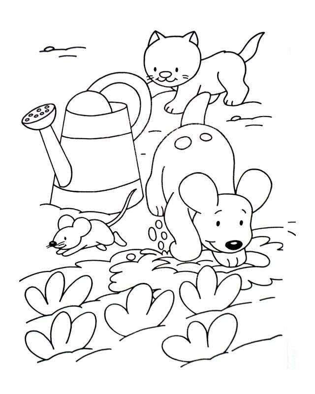 Dog And Cat Coloring Pages Dog Cat And Mouse Animal Coloring Pages For Kids To Print Color