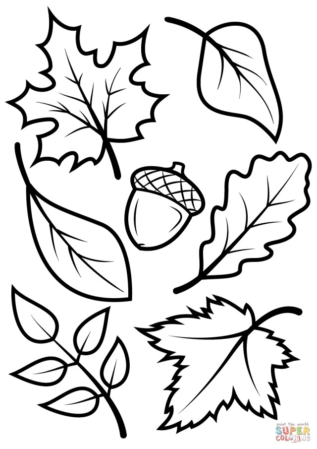 Fall Coloring Pages For Kids Fall Leaves And Acorn Coloring Page Free Printable Coloring Pages