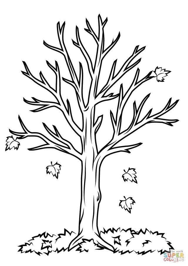 Fall Coloring Pages For Kids Fall Tree Coloring Page Free Printable Coloring Pages