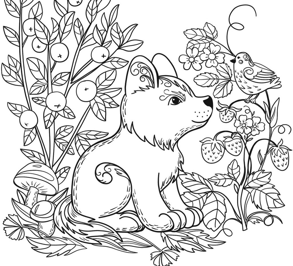 Forest Coloring Page For Children - Coloring Home | 928x1024