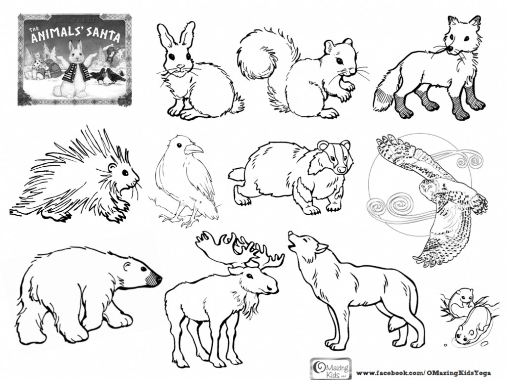Forest Animals Coloring Pages Forest Animal Coloring Page On Pages