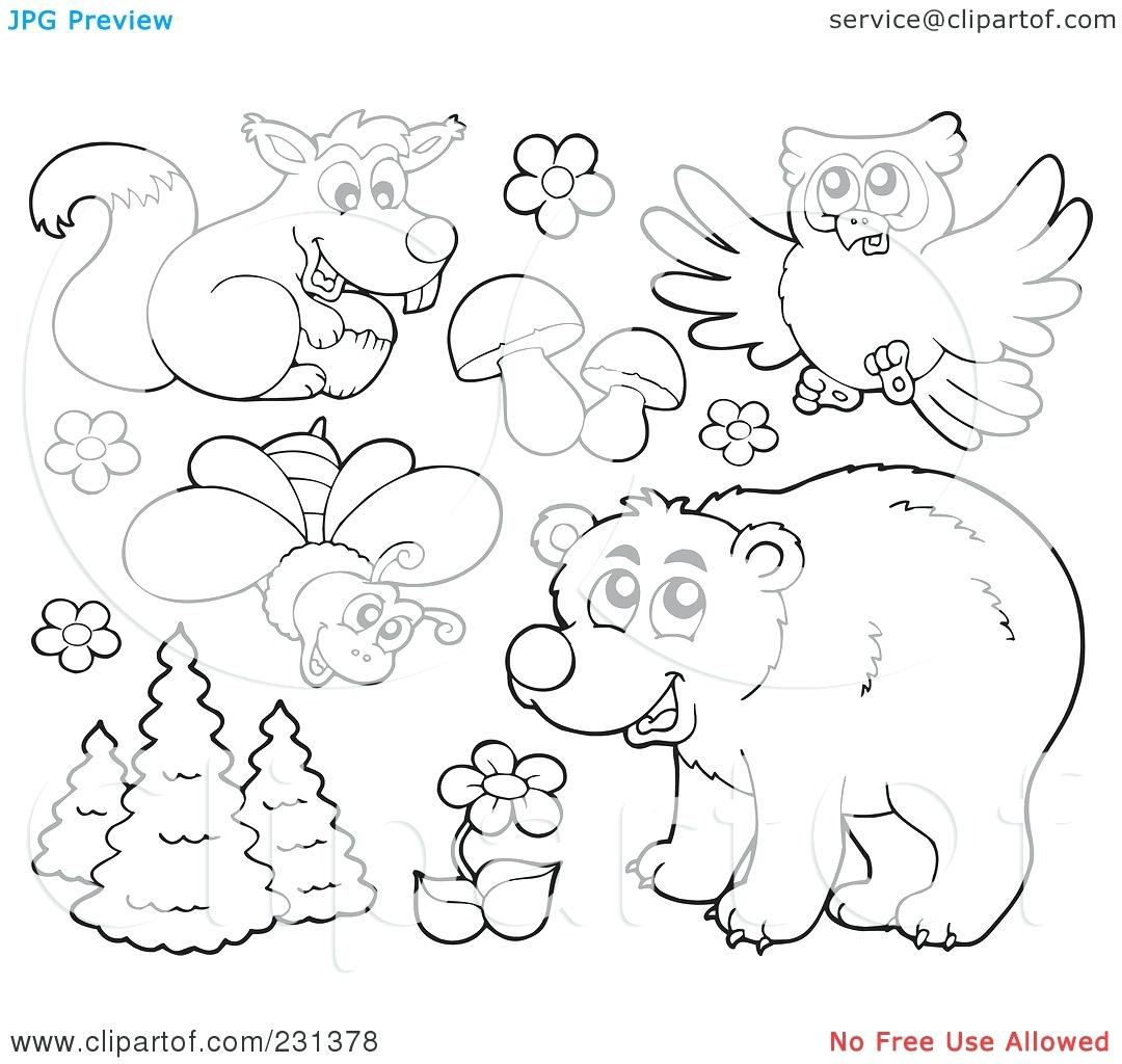 81 Underground Animals Coloring Pages For Free