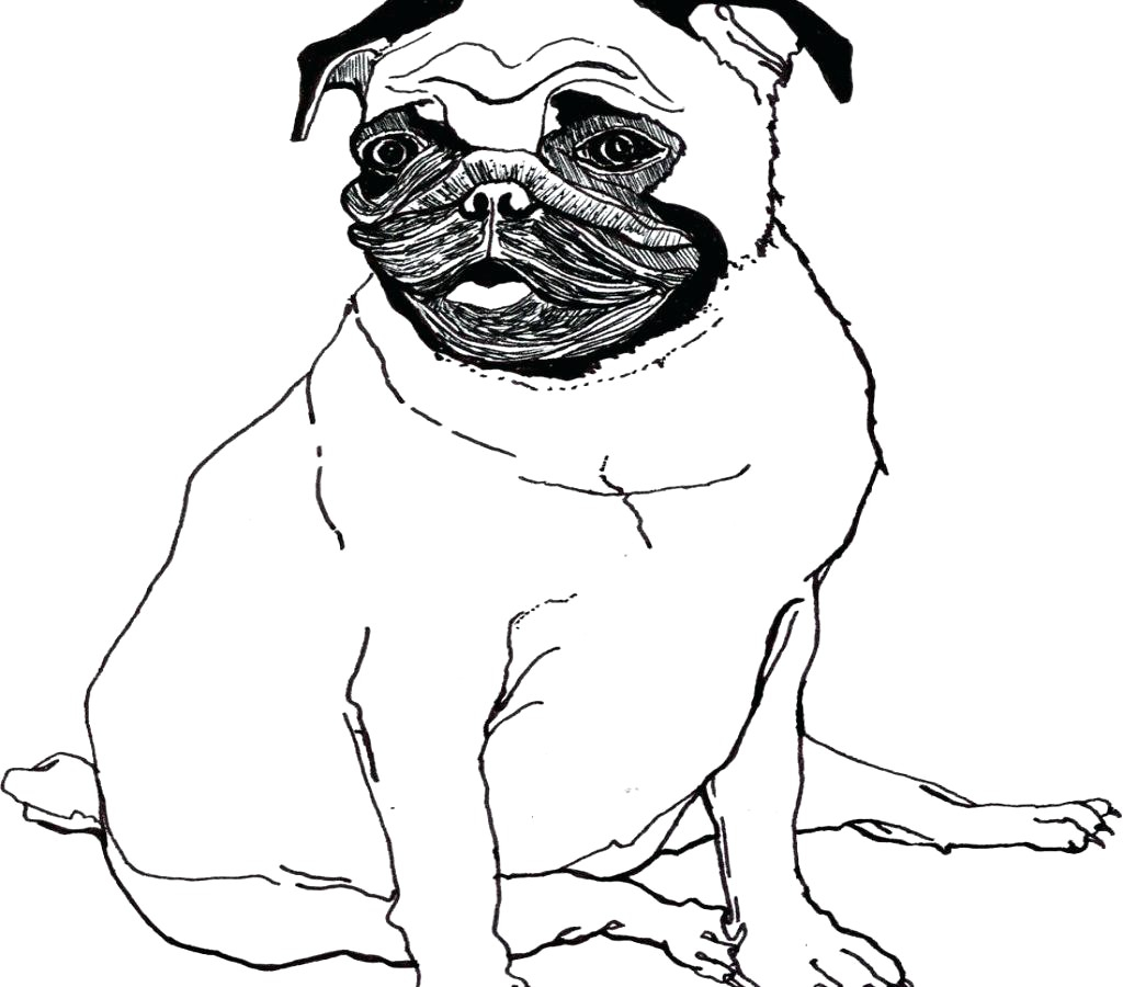 Free Dog Coloring Pages Cute Pug Dog Coloring Page Free ...