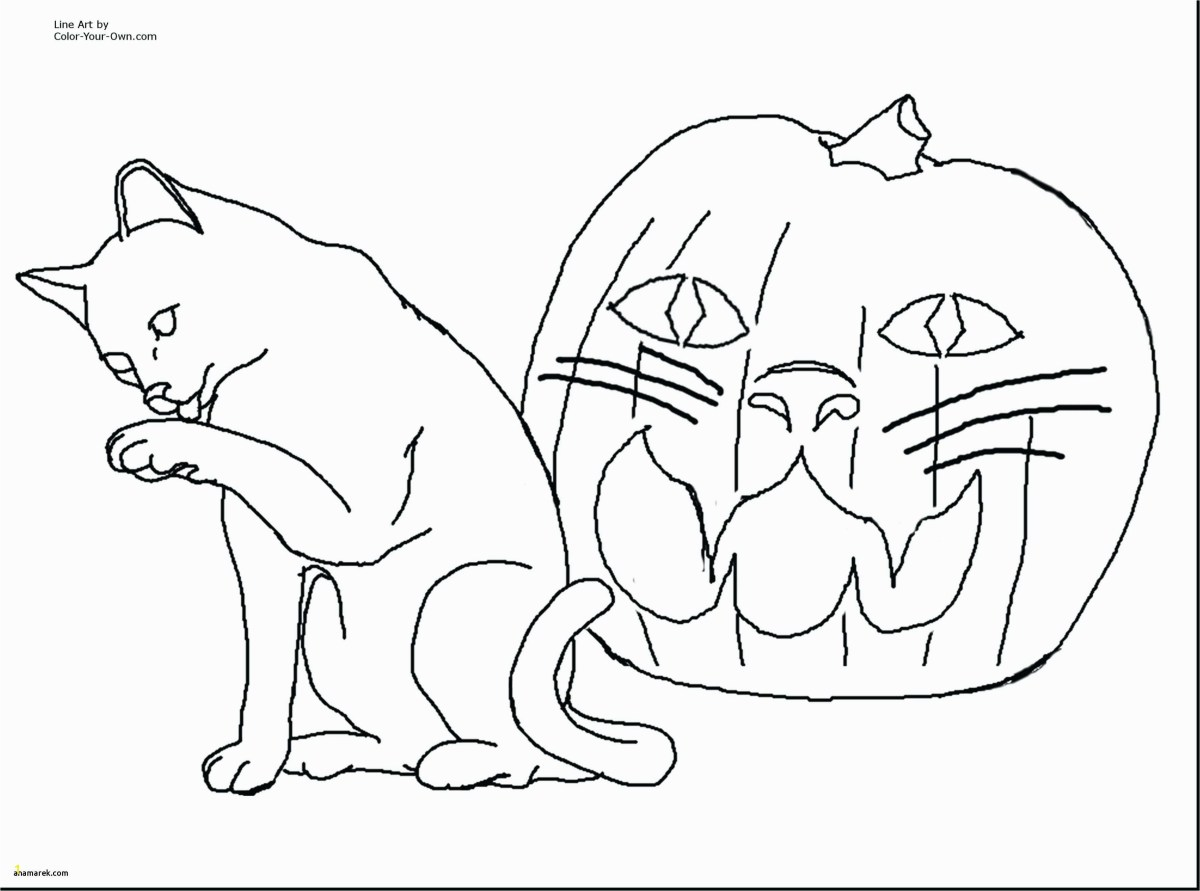 free dog coloring pages free printable cat and dog coloring pages zabelyesayan