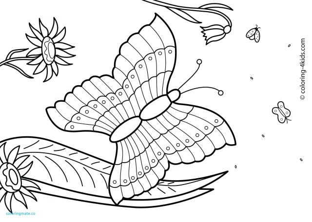 25+ Elegant Image of Free Summer Coloring Pages - birijus.com