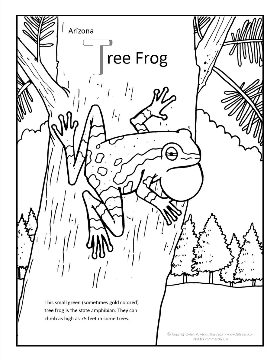 Frog Coloring Page Arizona Tree Frog Coloring Page - birijus.com