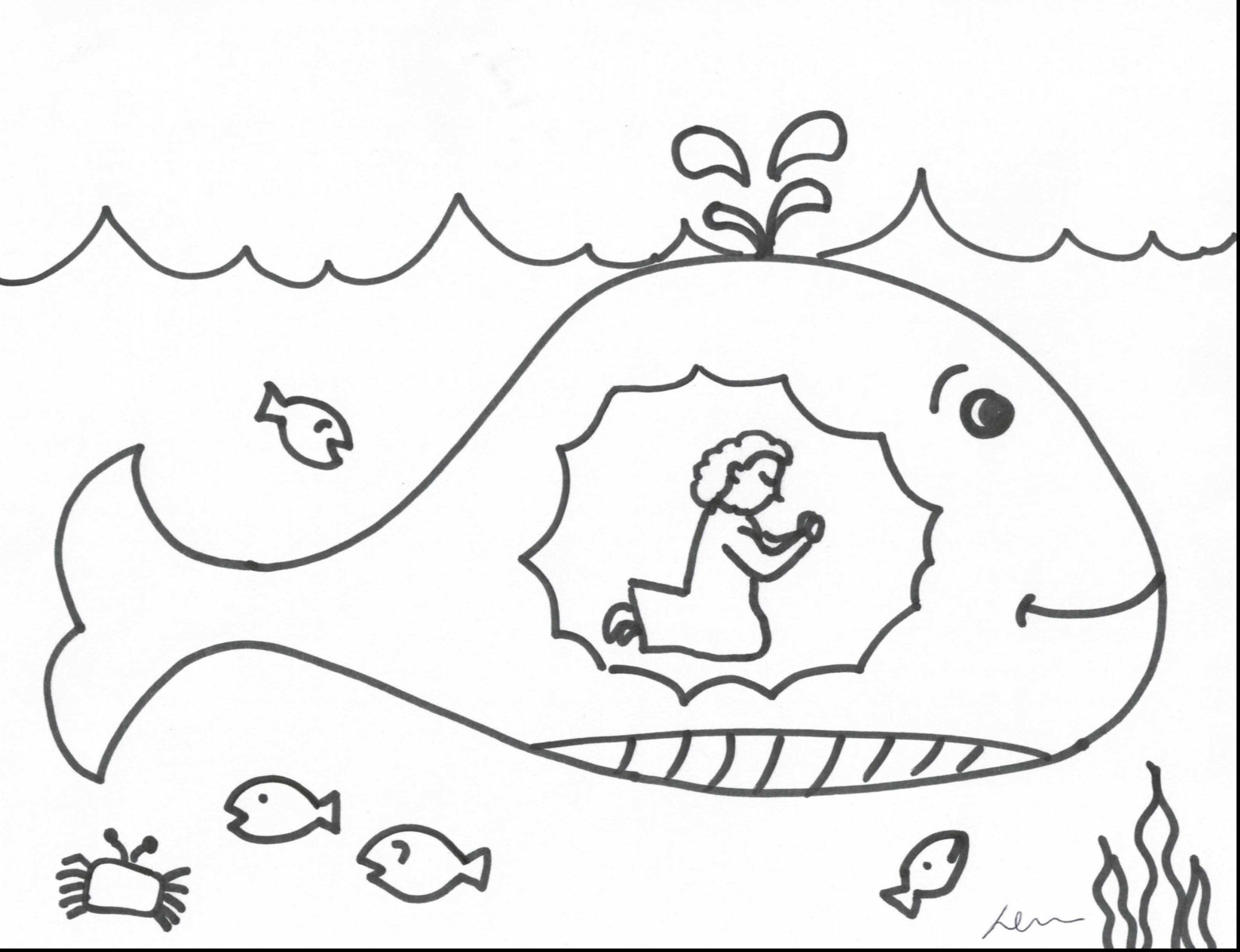 - Jonah And The Whale Coloring Page Jonah And The Whale Coloring