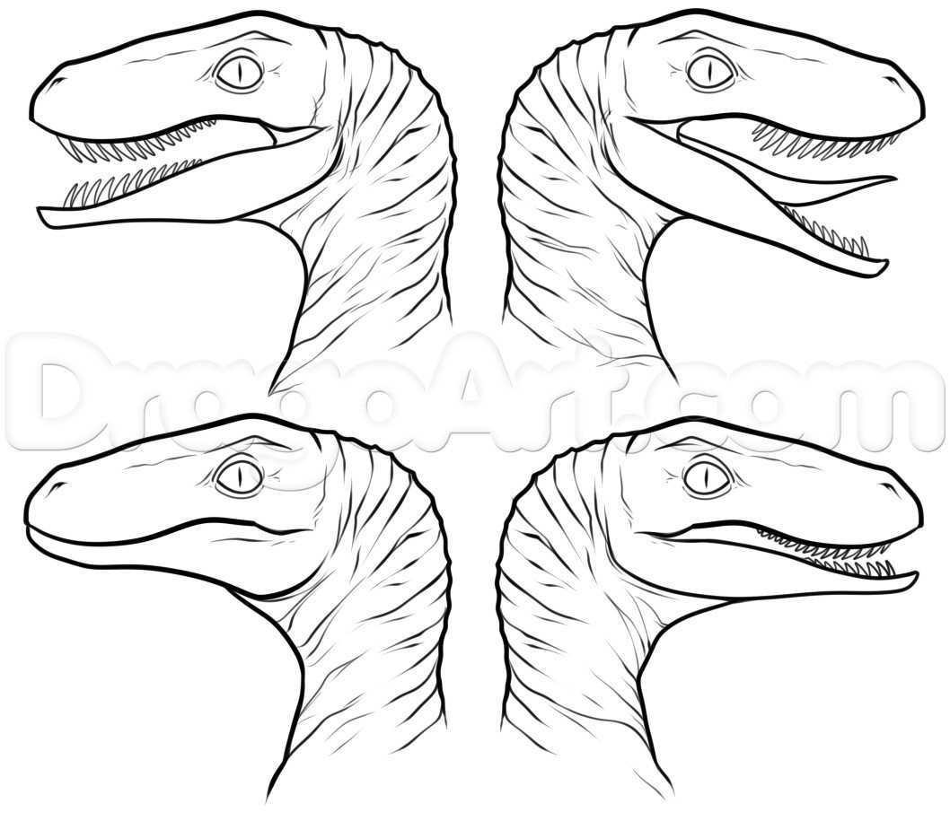 Jurassic Park Coloring Pages Velociraptor Coloring Pages Beautiful