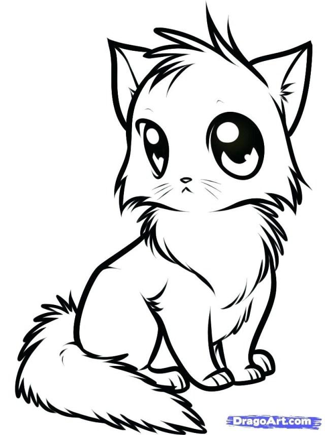 Kitty Cat Coloring Pages Kitty Cat Coloring Pages Printable At Getdrawings Free For