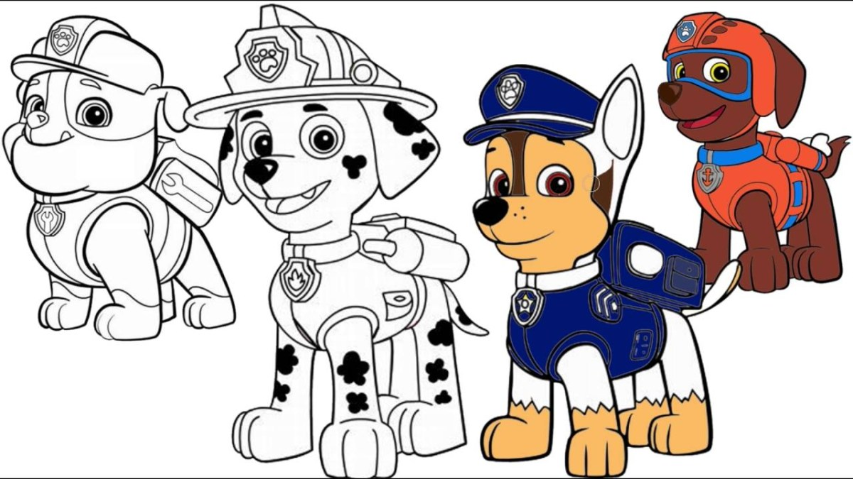 Marshall Paw Patrol Coloring Page Paw Patrol Marshall Chase Zuma
