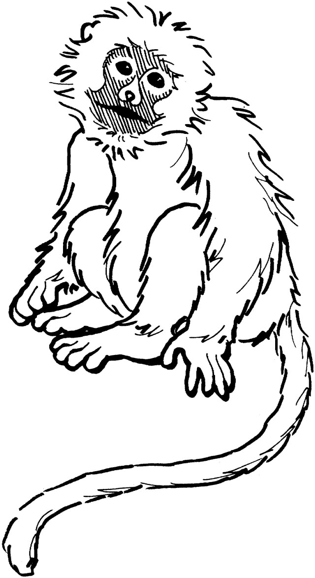 Monkey Coloring Pages Five Little Monkeys Coloring Pages 19 O Hanging Monkey 8 Futurama