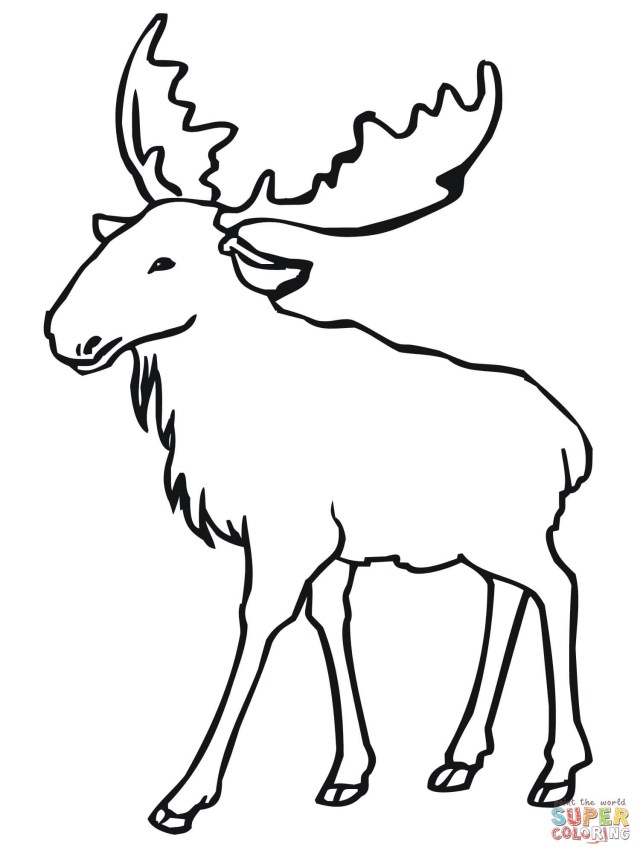 Moose Coloring Pages Eurasian Elk Moose Coloring Page Free Printable Coloring Pages